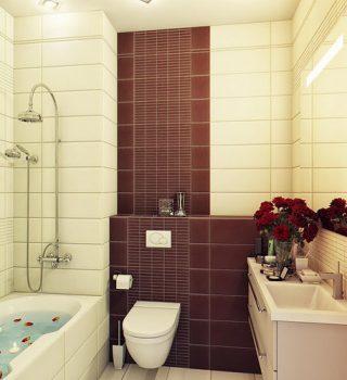 070-SPA-PROJEKTAI-nedidelis-jaukus-vonios-kambarys